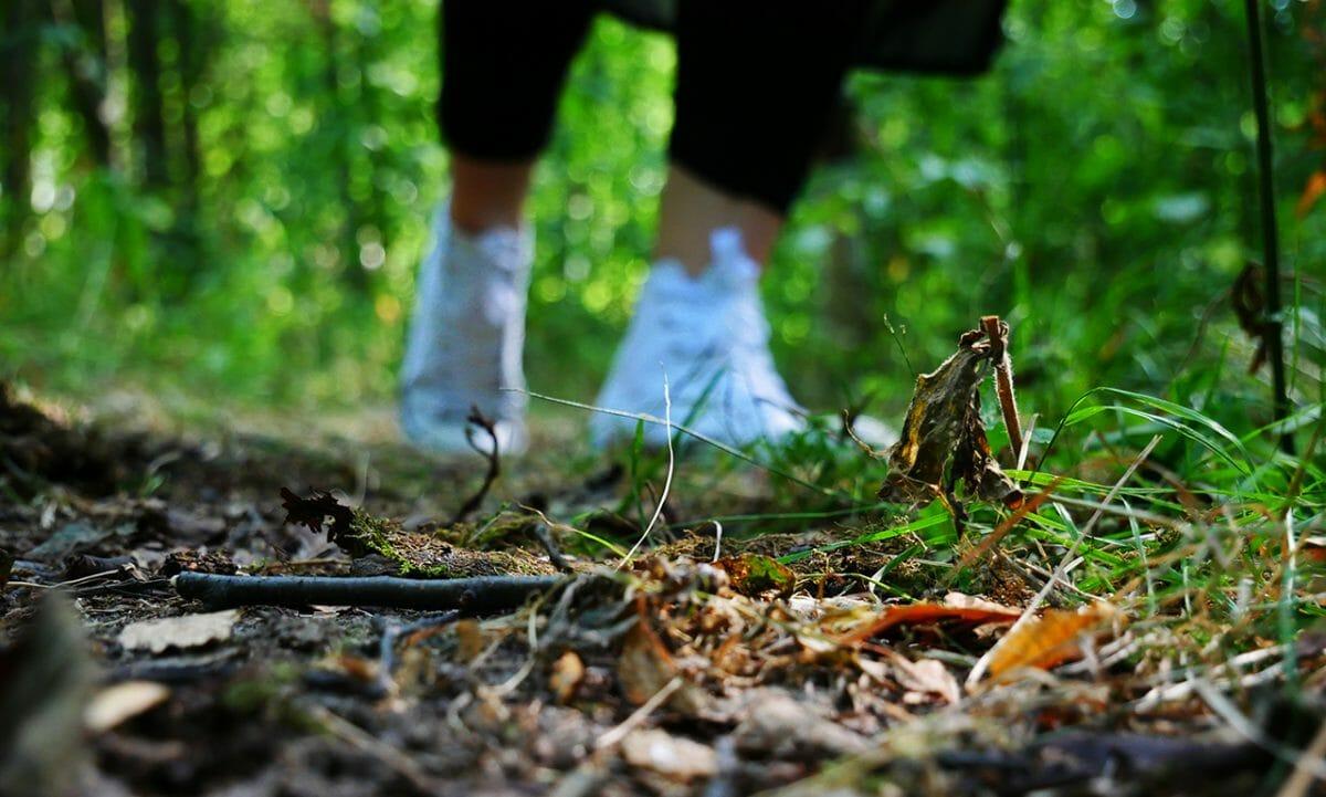 Joskus tekee vain mieli mennä metsään kävelylle.